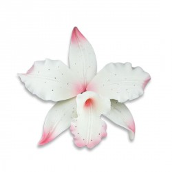 Orchidée Brassavola rose en pastillage Patisdecor